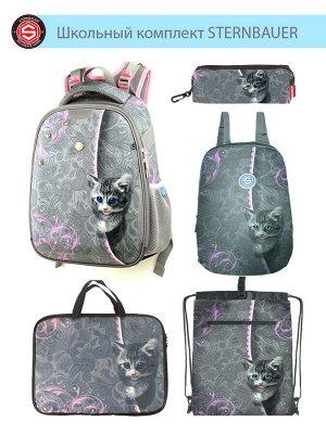 211001 Комплект школьный(Ранец + рюкзак + пенал + папка + мешок для обуви)