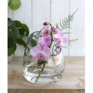 Декоративная ваза Корфу 13 см, стекло (Ideas4Seasons)