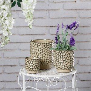 Набор керамических кашпо Malpolon 8-14 см, 3 шт (Kaemingk)