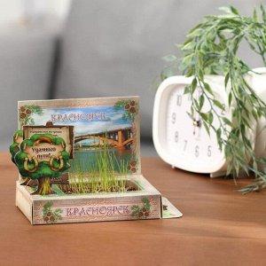 Растущая травка в открытке «Красноярск»