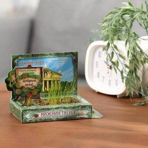 Растущая травка в открытке «Нижний Тагил»