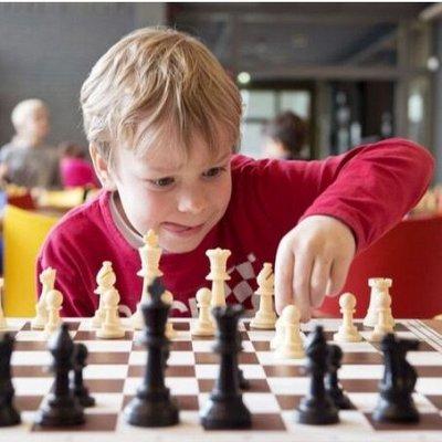 Экопокет. Психология в удобном формате — Шахматы - гимнастика для мозгов