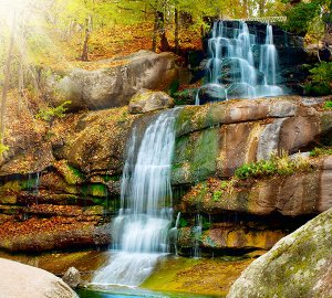 Фотообои Водопад в парке