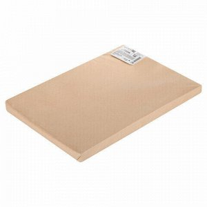 Бумага для акварели А3 297х420 мм, 1 лист, 200 г/м2, ГОЗНАК СПб, зерно, BRAUBERG ART CLASSIC, 113209
