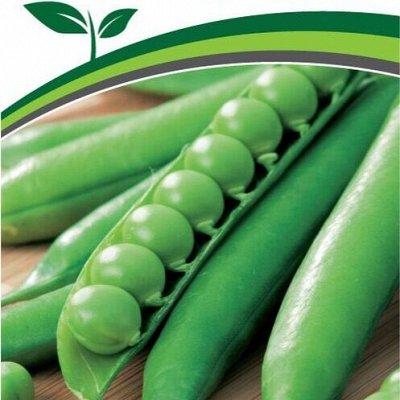 Семена Партнёр. Проверенные временем — Горох, кукуруза, фасоль