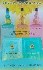 70015kr «Dear Beaute» Саше Шампунь +б.о. для придания объема с растит комплексом Himawari 10+10г