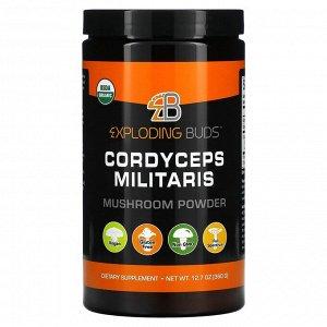 Exploding Buds, кордицепс военный, грибной порошок, 360 г (12,7 унции)