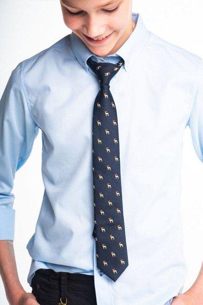 Царевич-детская сорочка это классика для школы — Галстуки для подростков