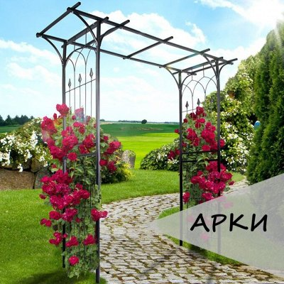 ДАЧНЫЙ СЕЗОН: опоры для растений — Металлические арки, шпалеры