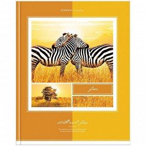 """Дневник 5-11 кл. 48л. (твердый) """"Животные. В мире животных"""", глянцевая ламинация"""