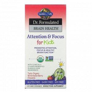 Garden of Life, Dr. Formulated Brain Health, внимание и концентрация для детей, вкус арбуза и ягод, 60 вкусных жевательных таблеток