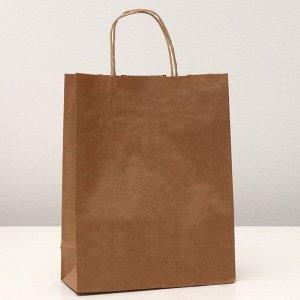 Пакет крафт без печати 25 х 11 х 32 см