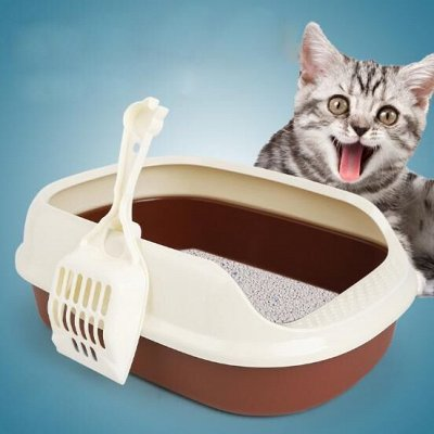 Дискаунтер Зоо Товаров — С Заботой и Ваших Питомцах — Кошачий туалет и совок для него