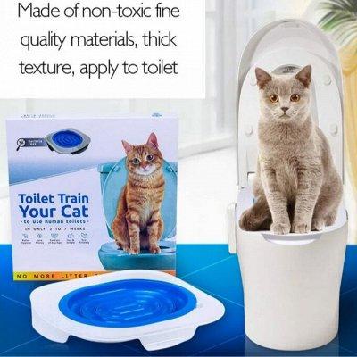 Дискаунтер Зоо Товаров — С Заботой и Ваших Питомцах — Система приучения кошки к унитазу