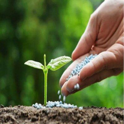 Большая распродажа для дома и сада — Удобрения и стимуляторы