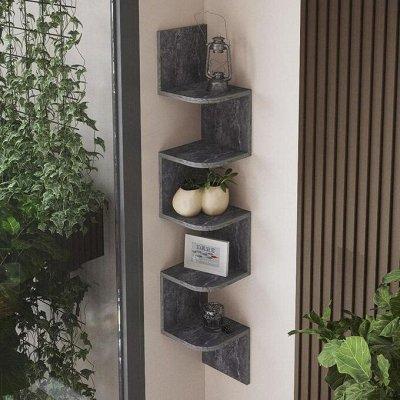 Академия мебели — свежие идея для Вашего дома. Цены радуют — Полки