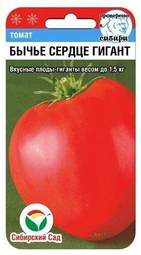 Бычье сердце гигант 20шт томат (Сиб сад)