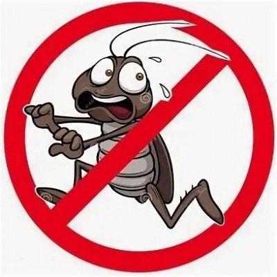 ✅ Всё что нужно каждый день! Носочки за 42 руб — Травим садовых вредителей, комаров, тараканов + Удобрения