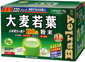 YAMAMOTO KANPOH- аодзиру в стиках мега упаковка