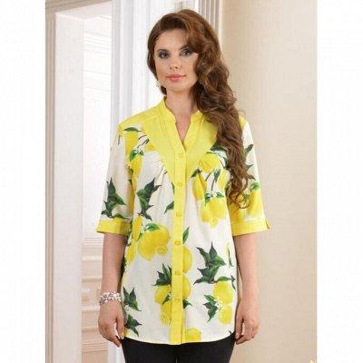 Salvi - Новая ветка женской одежды!