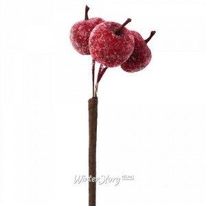Искусственные Яблоки для букетов 50 см бордовые засахаренные (Hogewoning)