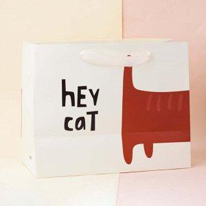 "Подарочный пакет(M) ""Kitty"", hey cat tail"