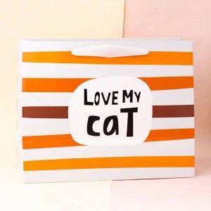 """Подарочный пакет(M) """"Kitty"""", love"""