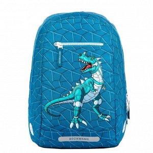 Дополнительный рюкзак Roborex