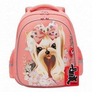 RAz-186-2 Рюкзак школьный