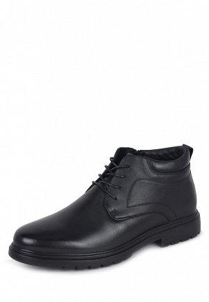 Ботинки мужские демисезонные WZDY21AW-10
