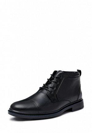 Ботинки мужские демисезонные 02-12F