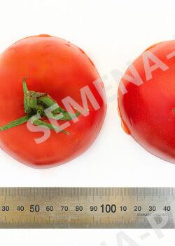 Семена Томат Ладья ^(10шт)