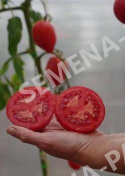 Семена Томат Фукс F1 ^ 10шт