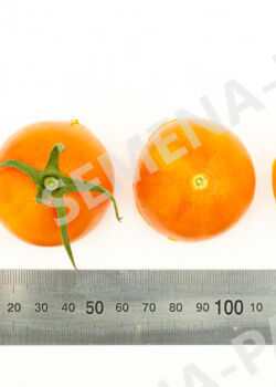 Семена Томат Барокко F1 ^(10 шт)