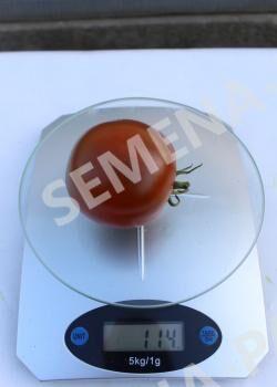 Семена Томат Вендетта F1 ^(5шт)