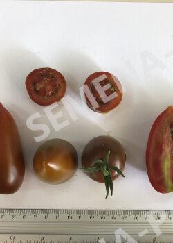 Семена Томат Бурый Саладет F1 ^(5шт)