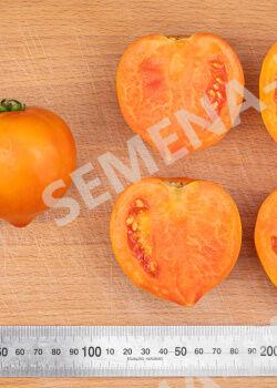 Семена Томат Золотая Миля F1 0,05гр