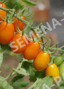 Семена Томат Ля Мур F1 ^(5ШТ)
