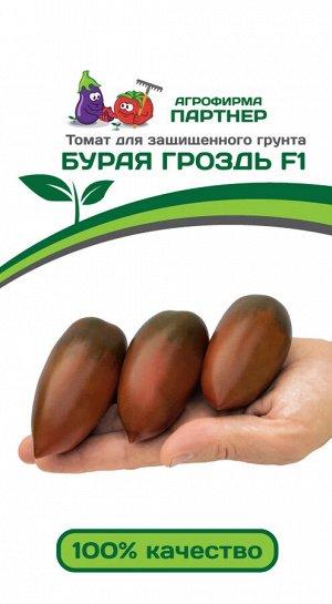 Семена Томат Бурая Гроздь F1 10 шт