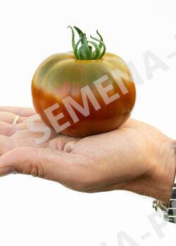 Семена Томат Ниагус ^(10ШТ)