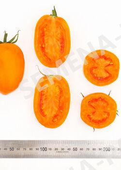 Семена Томат Оранжевый папа F1 ^ (10ШТ)