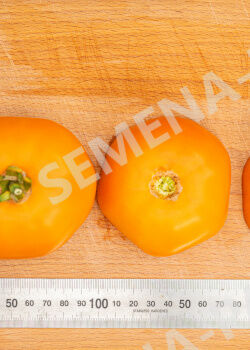 Семена Томат Сувенир F1 ^(10ШТ)