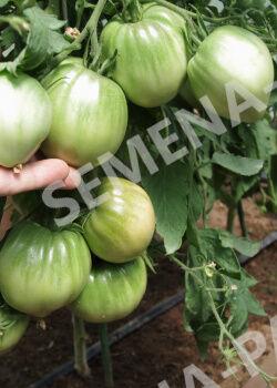 Семена Томат Фиолетовое сердце