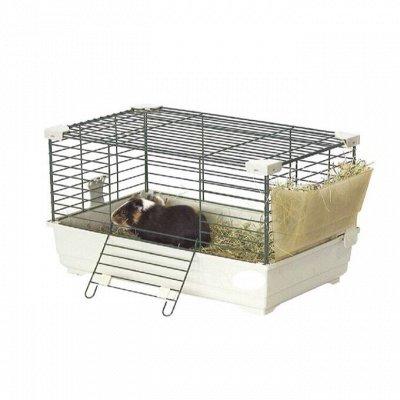 🐶 Догхаус. Большая закупка зоотоваров — Миски, клетки и аксессуары для грызунов