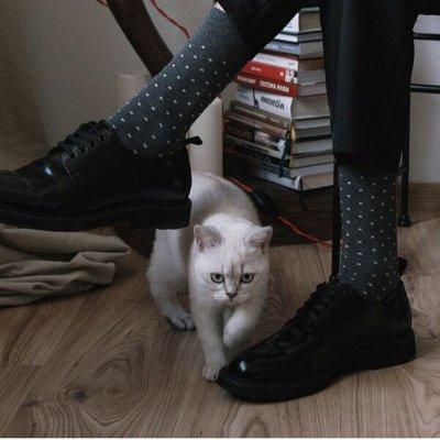 Conte — колготки, носки! Срочно утепляемся — Носки мужские классические, яркие, укороченные