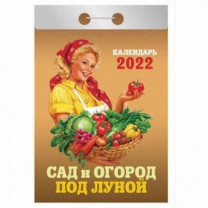 """Отрывной календарь на 2022, """"Сад и огород под луной"""", ОКА-19"""