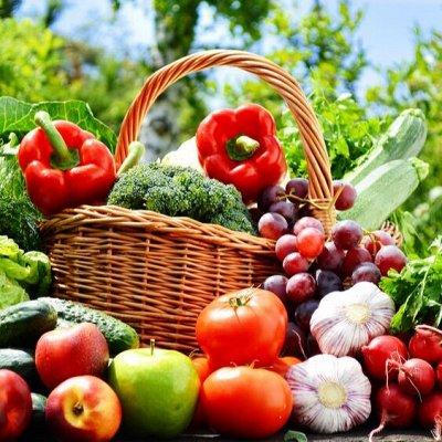 Всё что нужно каждый день! Пушистые мочалки — Для рассады, посадок и для хранения урожая