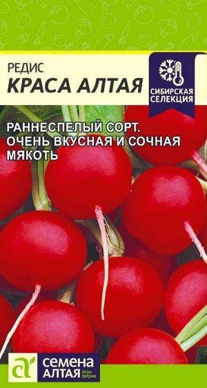 Редис Краса Алтая/Сем Алт/цп 2 гр. Сибирская Селекция!