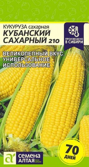 Кукуруза Кубанский Сахарный 210/Сем Алт/цп 5 гр.