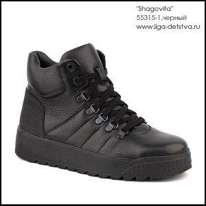 Ботинки мальчиковые (с 38 разм.)